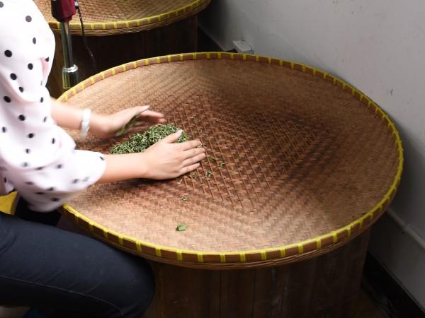 Teeverarbeitung-per-Hand